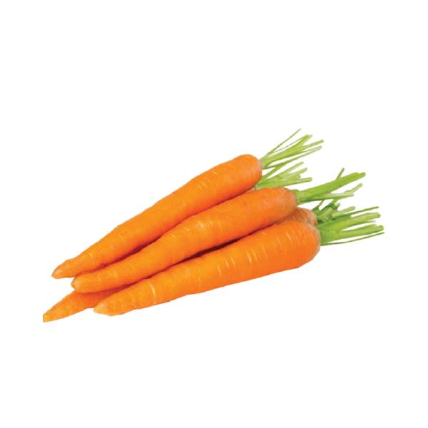 carrotmerahchina